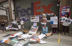 Wildlife activists from WildAid and Hong Kong Shark Foundation stage a bloody protest outside a FedEx depot to draw attention to FedEx's continued shark fin shipments into Hong Kong which is the global hub of the shark fin trade with over 50 percent of the trade passing through the city, Kennedy Town, Hong Kong, China, 03 July 2016. The activists dressed in blood-stained shark costumes and held placards calling on FedEx to stop shipping shark fin and laid down silently on the ground.